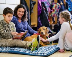 emBARK Therapy Dog Prep Workshop and Classes