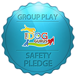 Safety Pledge Logo